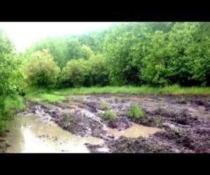 Видео Wildcat 1000 vs RZR900 по грязи