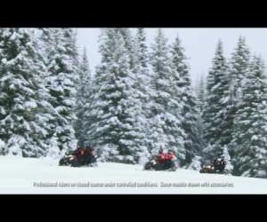 Шасси снегоходов Bearcat видео [eng]