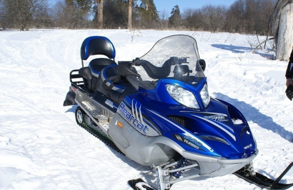 Купить Arctic Cat Bearcat 660