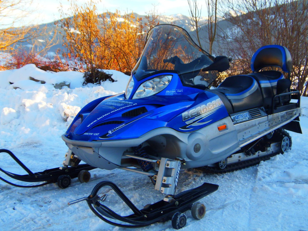 arctic cat bearcat 660