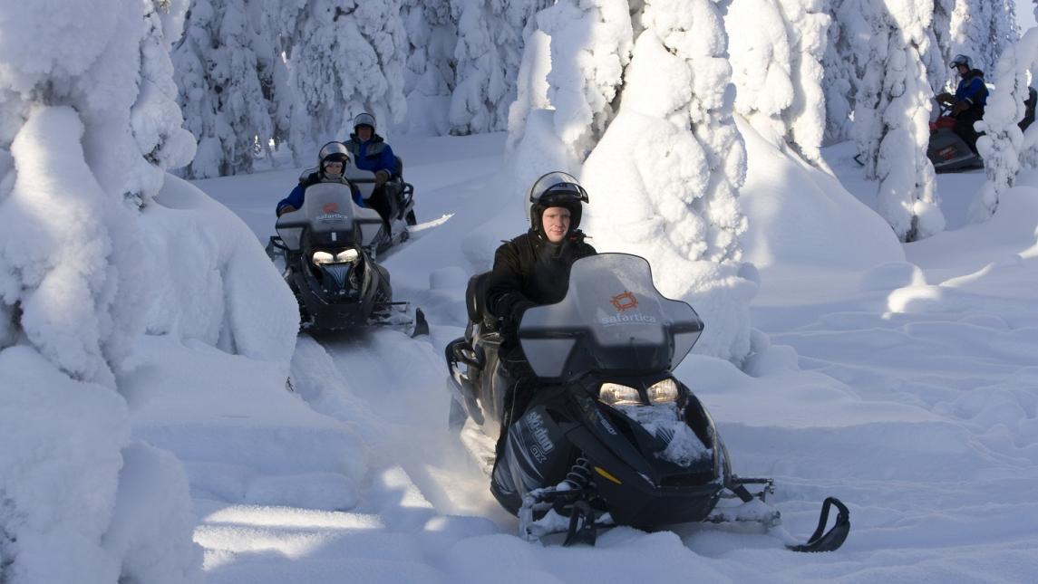 Путешествия на снегоходах по лесам